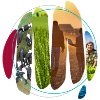 ABARES 2021 Outlook