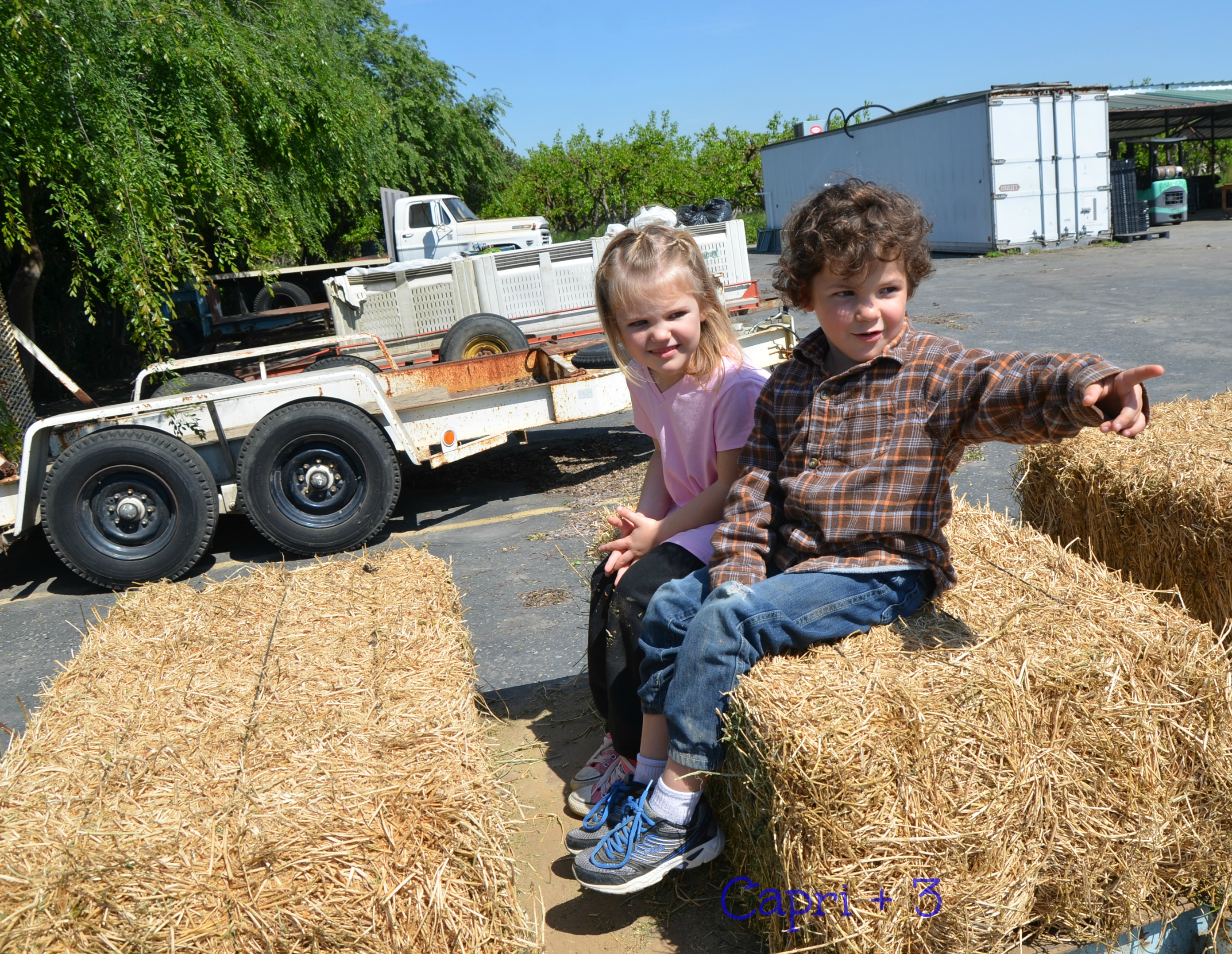 A hayride was part of the day's adventures on the tour of the farms and facilities.