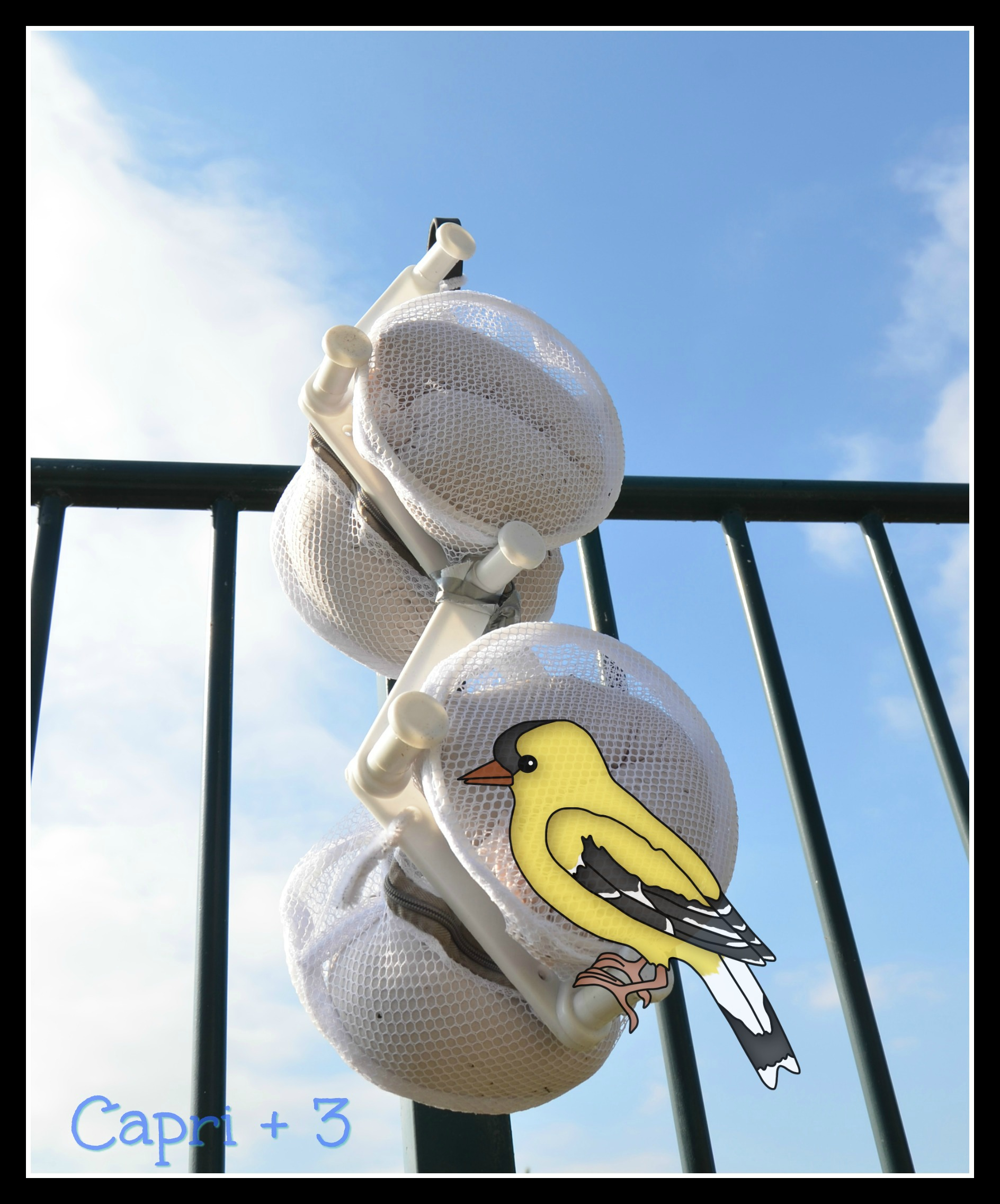 Make double decker Finch Bird Feeder Using Things That Can Be Found At the Dollar Store