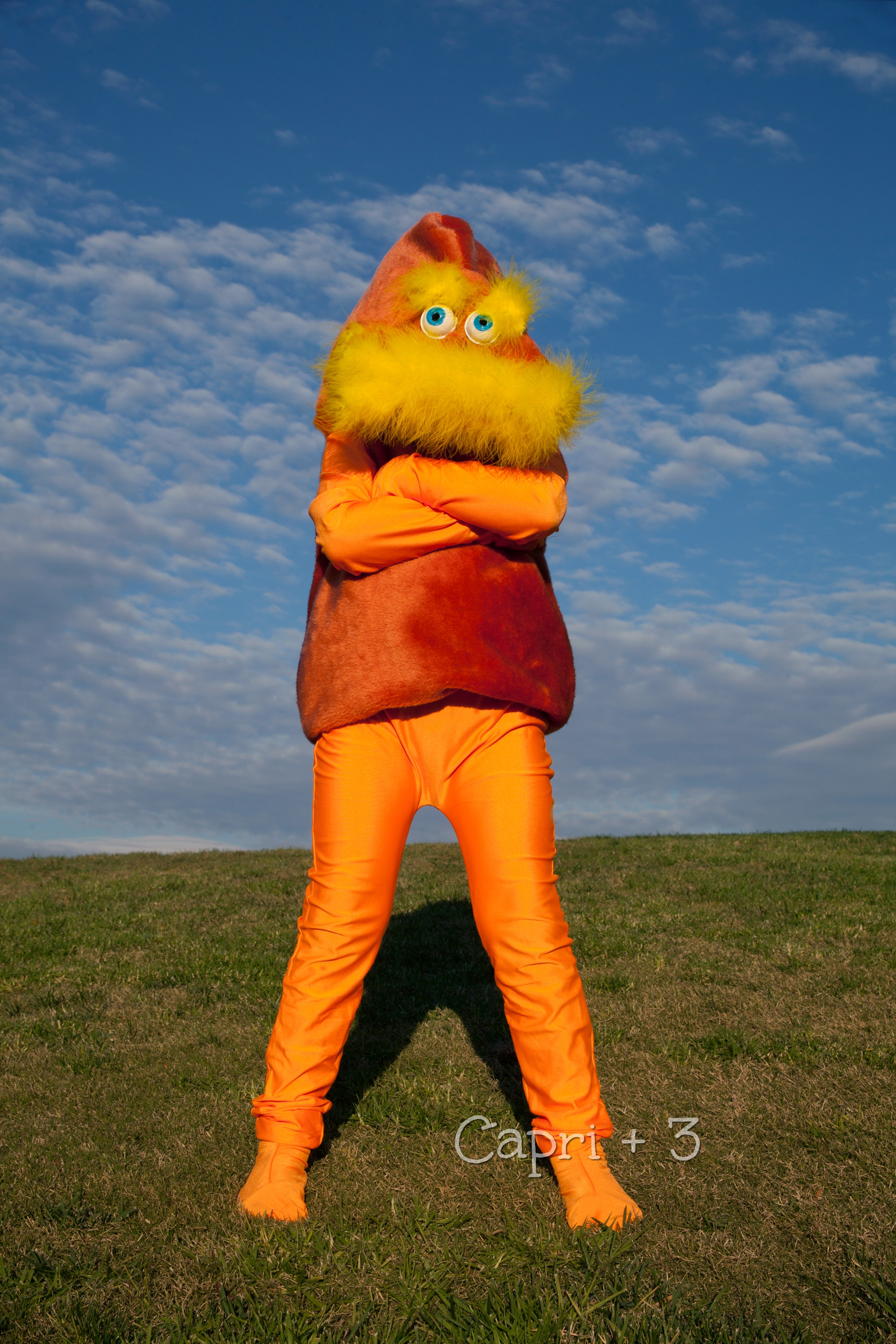 the-lorax-costume