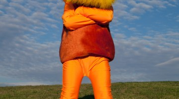 The Lorax Themed Costumes