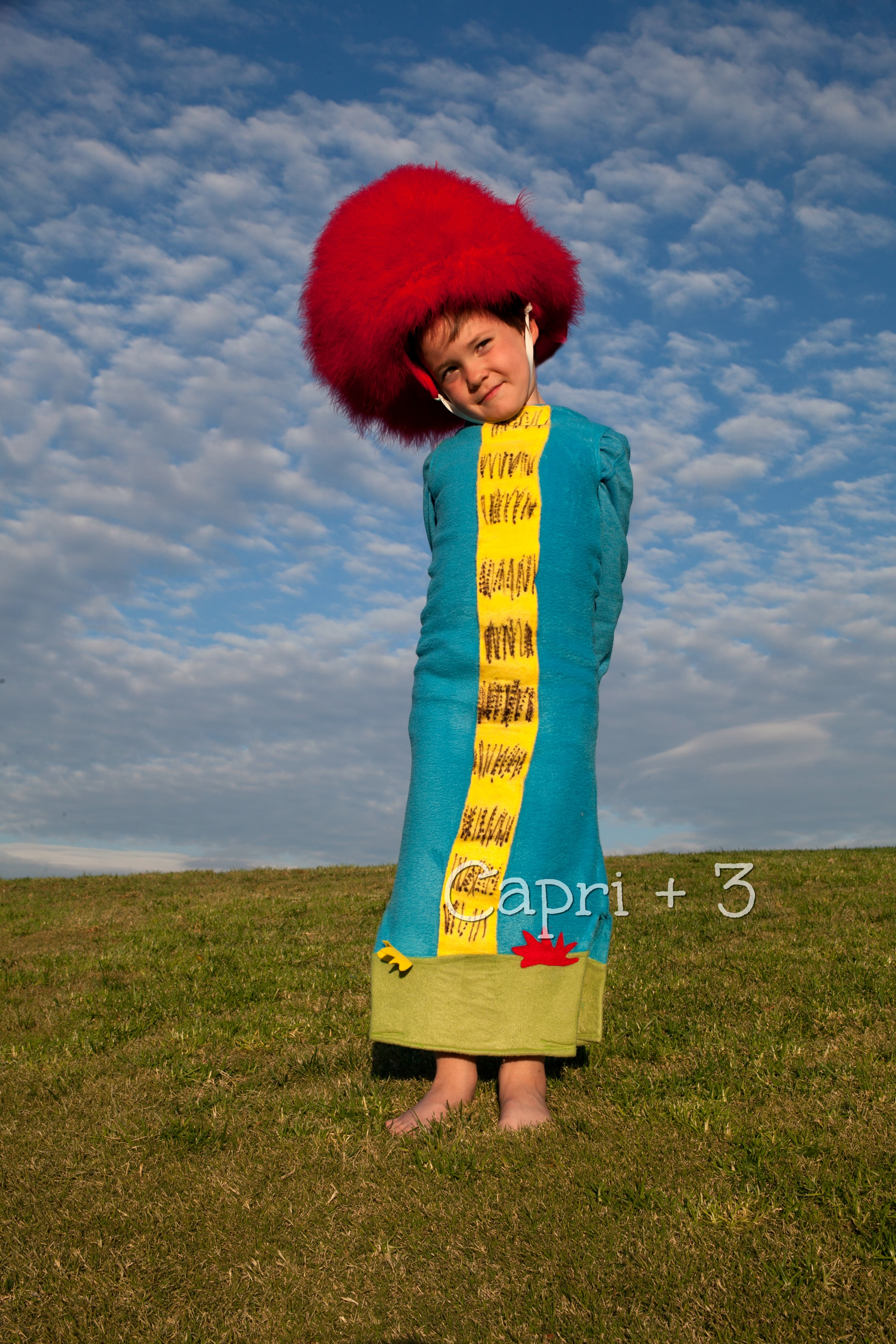 truffula-tree-themed-costume-the-lorax