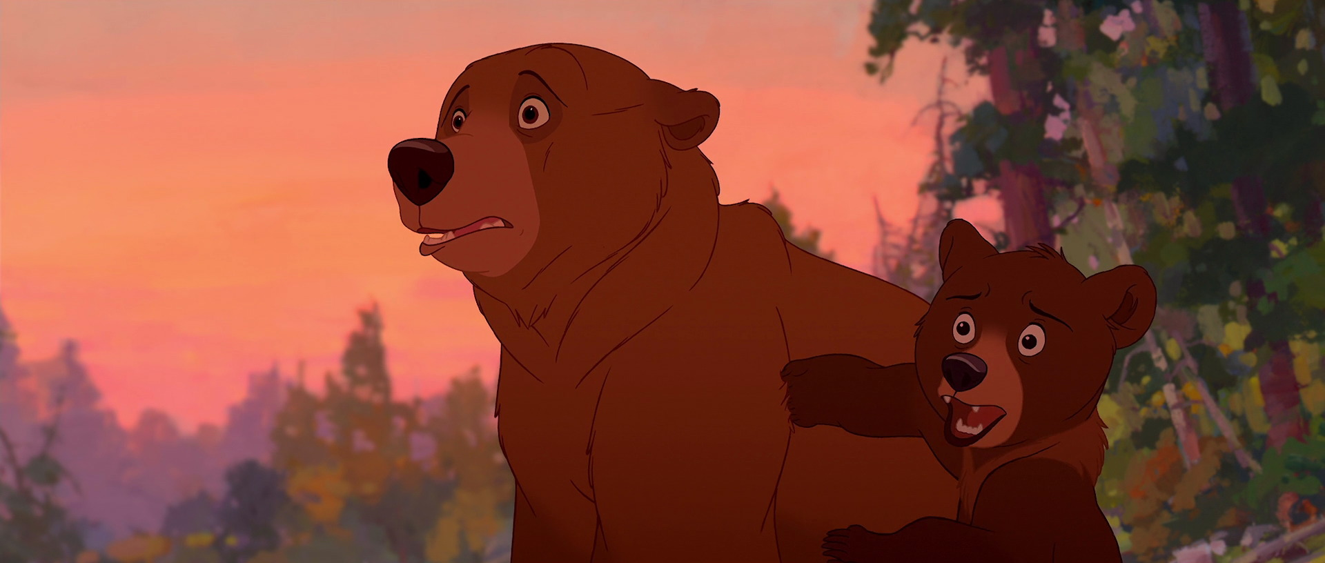 Brother Bear Still