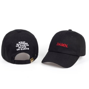 8d0595f9b75 ... https   capshop.store DAMN snapback baseball caps for men and woman Embroidered  Dad Hat Hip Hop Stitched Unstructured ...