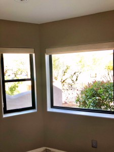 bronze double hung picture