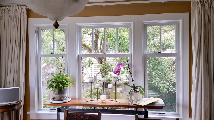 double replacement windows in scottsdale az