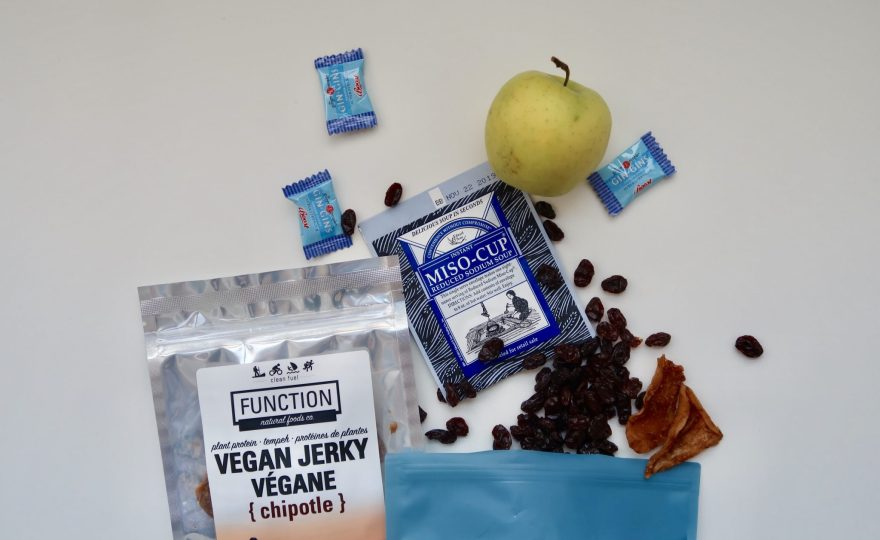 what snacks to pack for plane travel