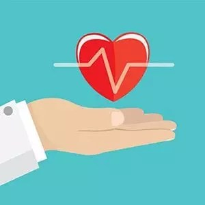 Heart health; hand holding heart