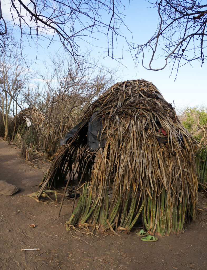 #traditional #Hadzabe #hut made from flexible branches