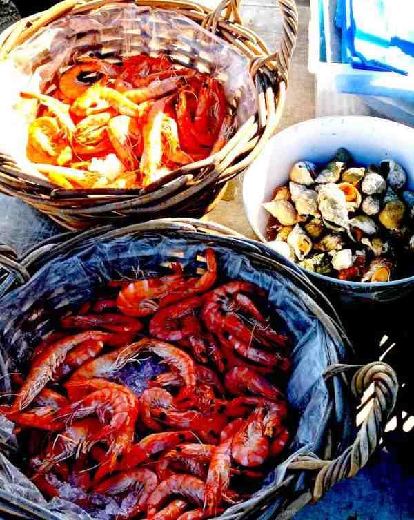 crevettes - bulots - captain marée - ostréiculteur - morbihan - vente directe - vente en ligne
