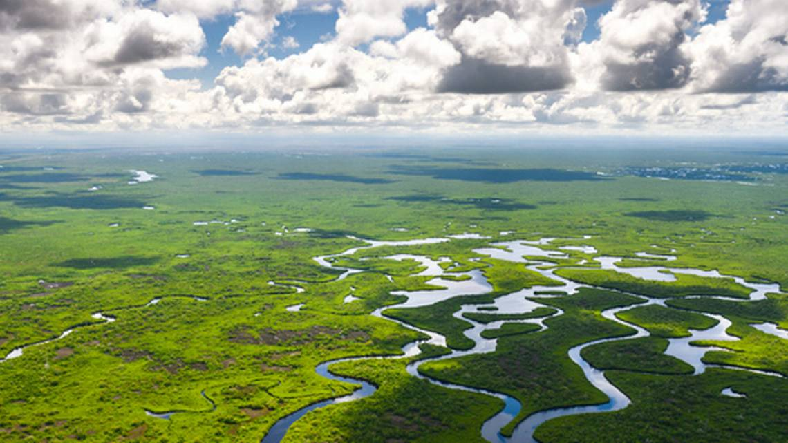 https://i0.wp.com/captainsforcleanwater.org/wp-content/uploads/2020/05/everglades.jpg?fit=1140%2C641&ssl=1