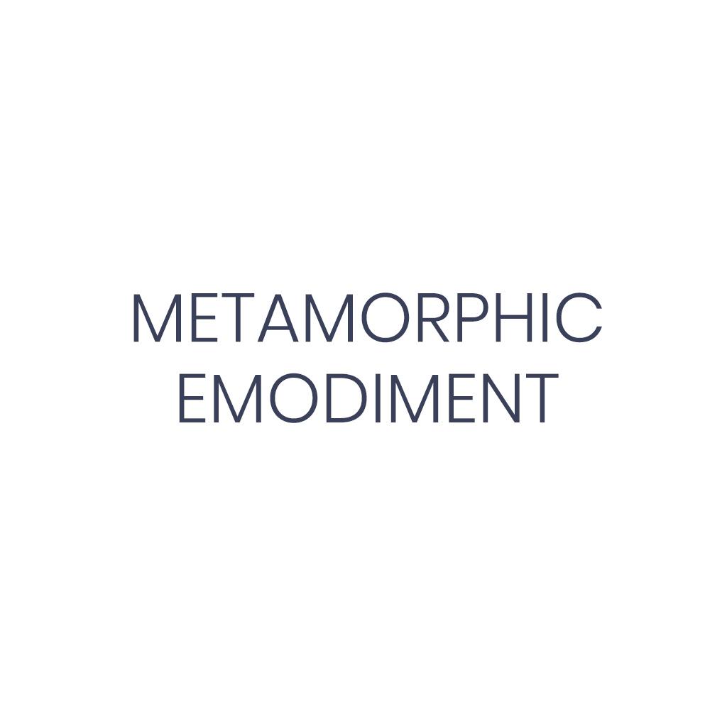 Metamorphic Embodiment Dr. Liam Captain Snowdon
