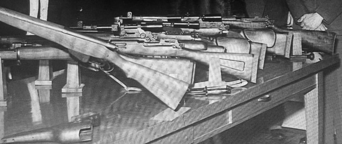 SAL Long Branch example firearms close-up
