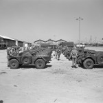 Ferret Scout Cars lined up in Egypt.