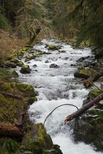 En amont de la cascade Soleduck Fall