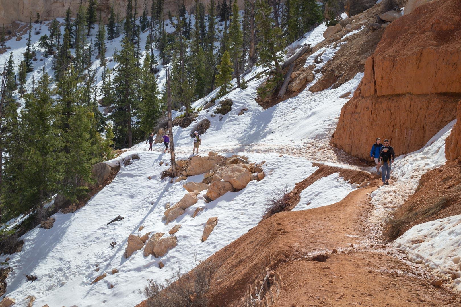 Une partie de la randonnée s'est faite dans la neige !
