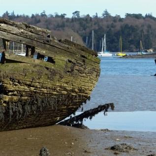Le cimetière de bateaux de Kerhervy (5)