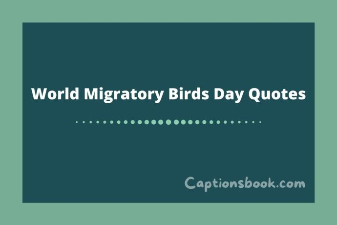 World Migratory Birds Day Quotes