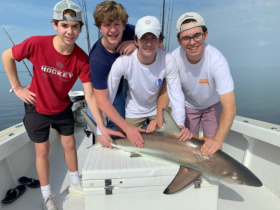 Blacktip Shark, Sanibel Island Fishing, Catch & Release, Captiva Island, Wednesday, February 12, 2020.