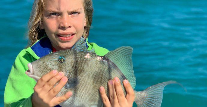 Triggerfish, Sanibel Island Fishing, Catch & Release, Captiva Island, Wednesday, February 19, 2020.