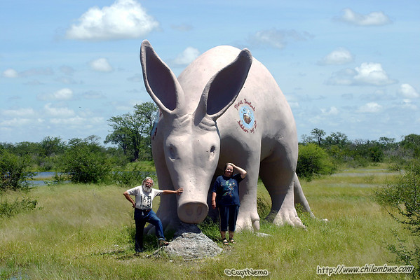 Mom and Dad by the Giant Aardvark.