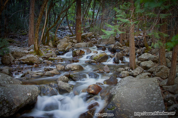 stream in Yosemite