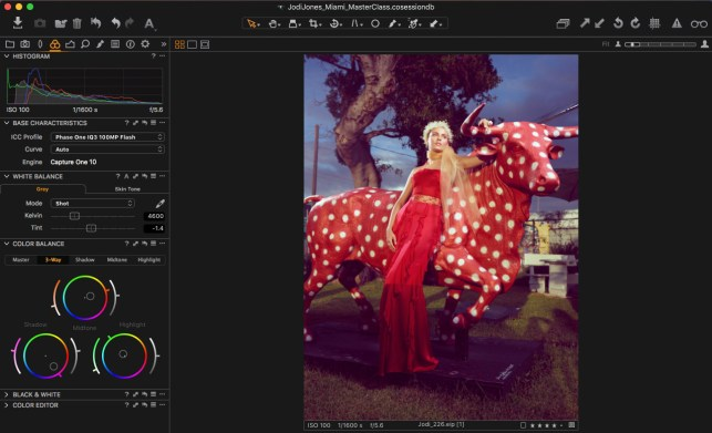 10. Apply similar adjustments of the first image in Color Balance