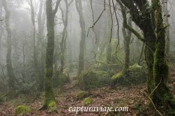 Taller de Fotografía de Paisaje - Parque Natural de los Alcornocales - 15 - M