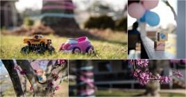 Caitlin Gender Reveal Collage 1