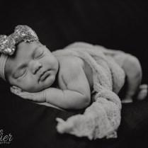 Lucia Newborn-2457
