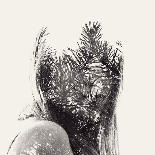 christoffer_relander_spruce