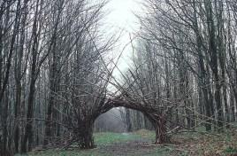 andy_goldsworthy_branch_arch