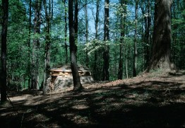 chris_drury_cloudchamber_forest
