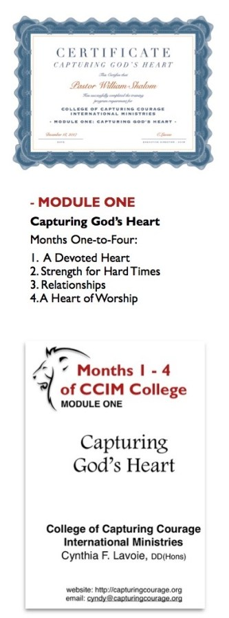 web pic course modules info overview 3