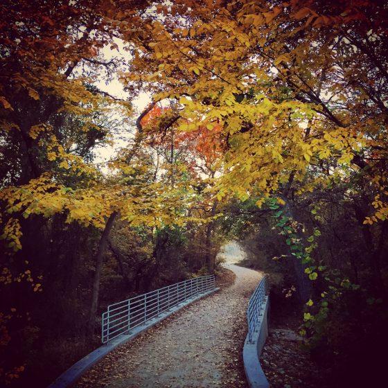 Whispering woods, Oakmont Park