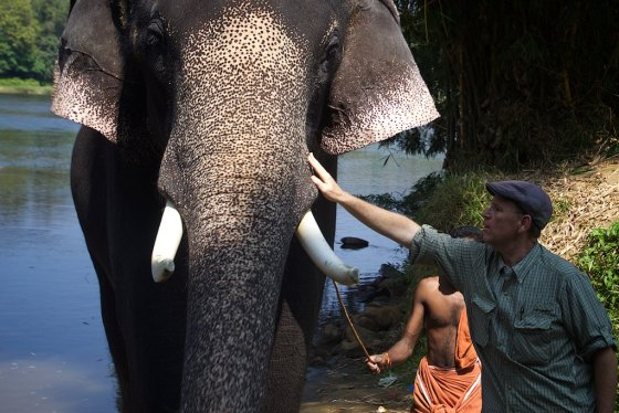 Elephant story 14