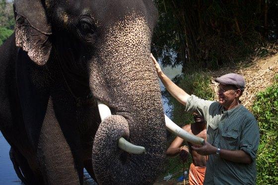 Elephant story 16