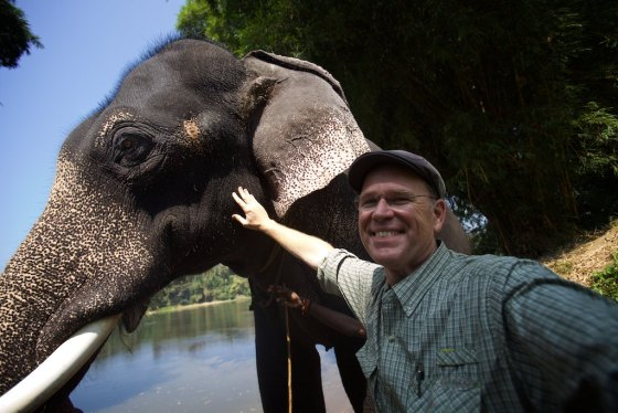 Elephant story 4