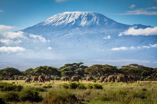 Mt_-Kilimanjaro01