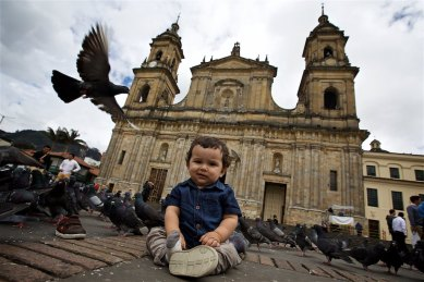 This little fellow... in Plaza de Bolivar