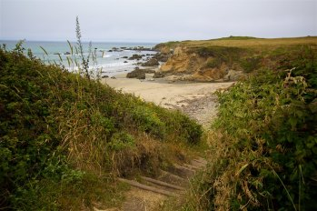 Pigeon point 17
