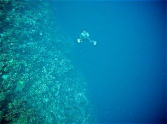 Day 04 diving story 6