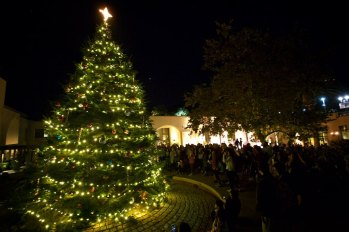 Tree lighting at Pepperdine 2