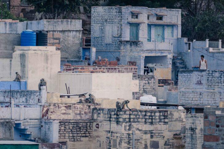 Rooftops-28