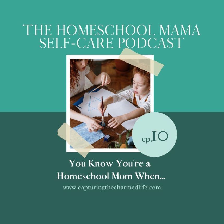 You Know You're a Homeschool Mom When...