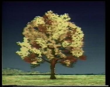 Yasuhiro Yamaguchi e altri, A Tree (Japan, 1985)