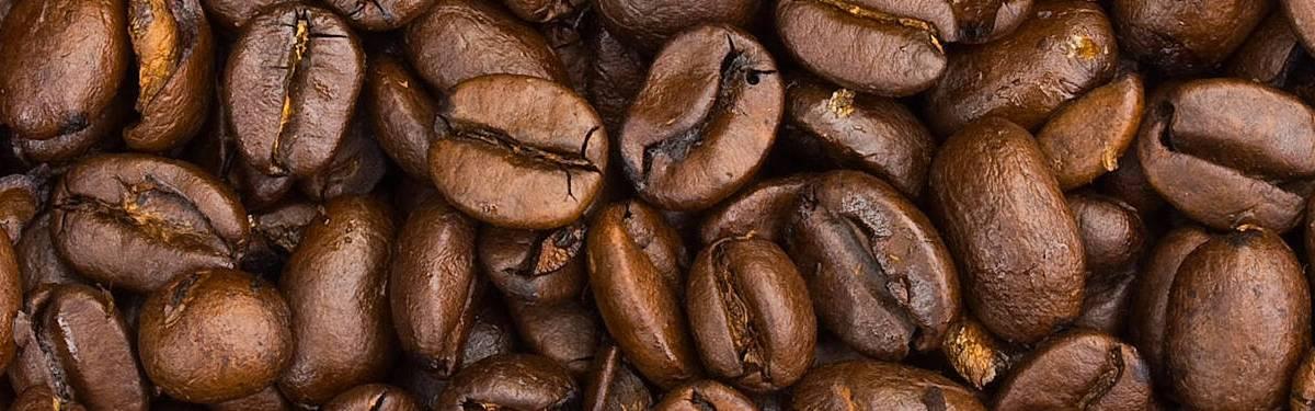 Todo lo que tienes que saber para disfrutar de una buena taza de café por las mañanas