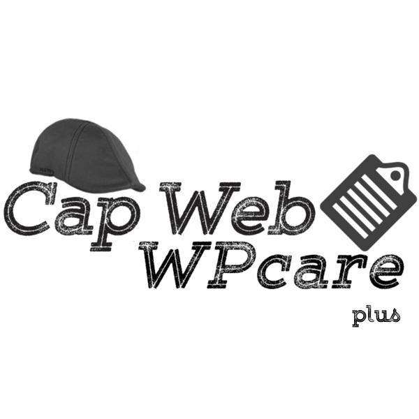 Cap Web Solutions WPcare Plus Subscription
