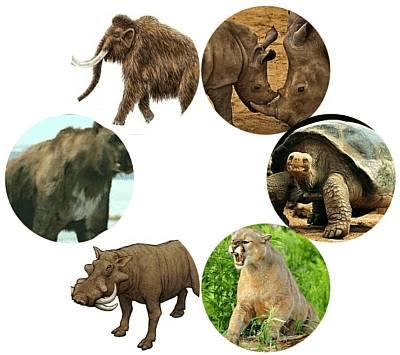 animales-prehistoricos