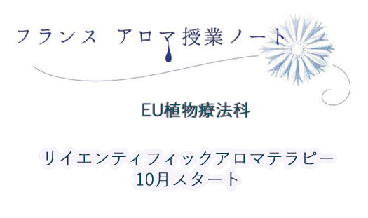 【講師ブログ:濱田先生】覚えるアロマから考えるアロマへ
